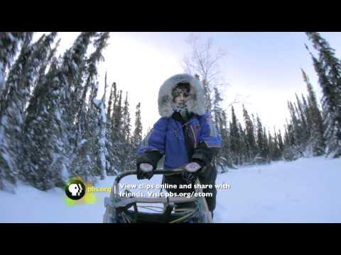 Alaska: America's Renewable State? (ENERGY QUEST USA)