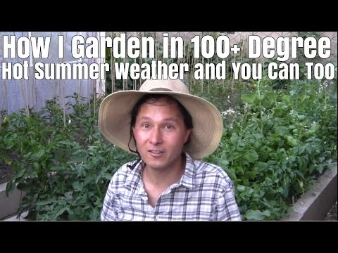 How I Garden Outside in 100+ Degree Hot Summer Weather and You Can Too
