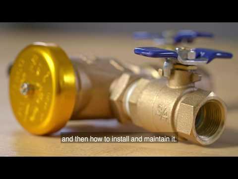 Watts Series 765: Pressure Vacuum Breaker