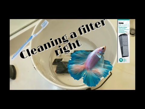 HOW TO CLEAN FILTER IN FISH TANK (BETTA FISH) 2018