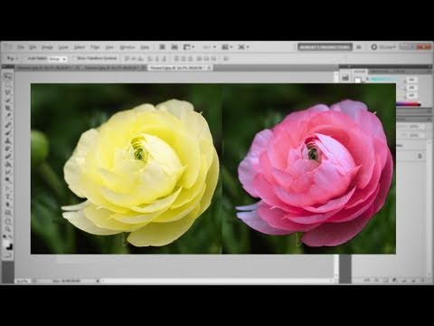 Photoshop - Match Color
