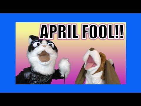 April Fool!  George the Self Esteem Cat