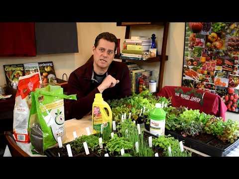 An Extensive Guide for Garden Fertilizers: Soluble, Insoluble, Macro-Nutrients, Feeding Seedlings