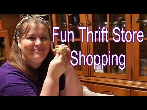 Tessie's Five Dollar Shopping Trip and DIY Project