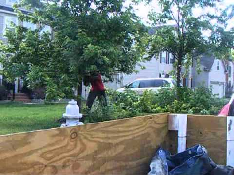How to trim overgrown trees