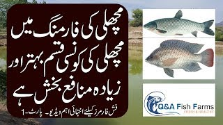 Fish Farming, Cost estimation and Expenditures in Fish Farming, Video 14