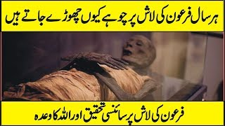 Latest Scientific Research On Body of Firon In Urdu Hindi