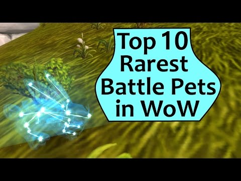 Rarest Pets in WoW - Top 10 Rarest Battle Pets in World of Warcraft