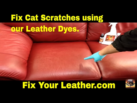 How to FIX CAT SCRATCHES on a LEATHER couch.