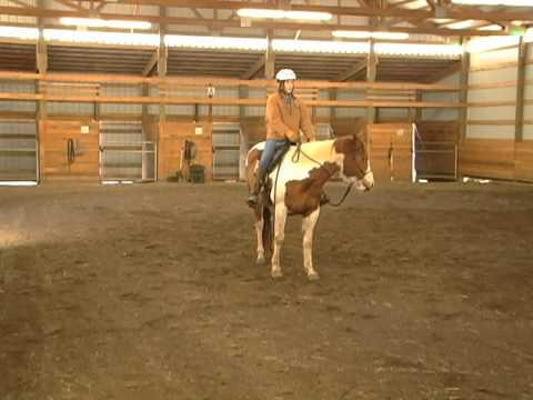Be Your Horses Eyes with Gentle Horse Trainer Missy Wryn