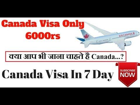 How to take Visa For Canada...? Hindi & Urdu