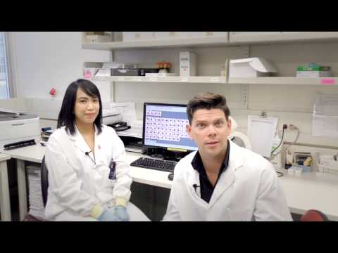 In The Lab - Complete Blood Count (CBC)