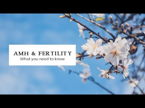 AMH & Fertility: What you need to know.