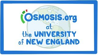 Osmosis.org at the University of New England in Portland, ME, USA