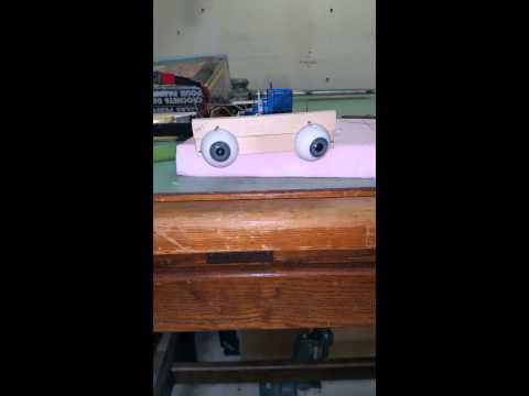 DIY animatronic eyes.