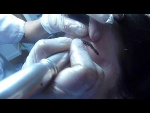 Permanent Make up Eyebrow/Semi Permanent Make up Training at Derma Contour