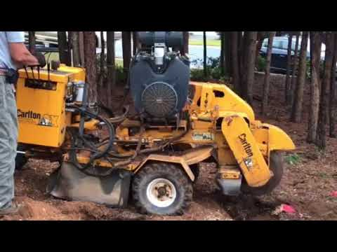 Stump Grinding with Carlton Stump Grinder