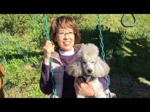 Chef and Francis Ride on the Swing | Cooking with Dog