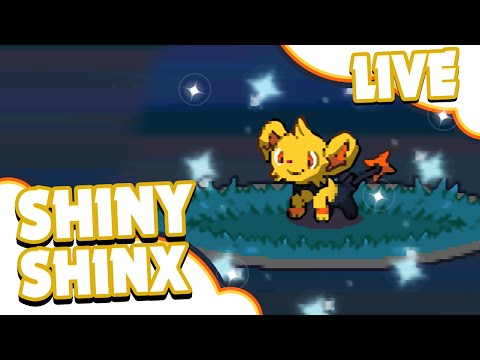 LIVE Shiny Shinx After A Chain Of 7 Via PokeRadar - Pokemon Platinum