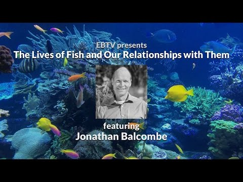 The Secret Lives of Fish and Our Relationships with Them with Jonathan Balcombe