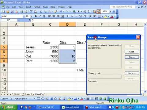 Scenarios in MS Excel 2003 in Hindi Video By Rinku Ojha