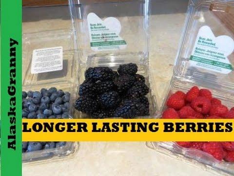 Longer Lasting Berries Tips And Tricks