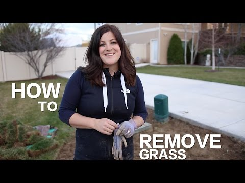How to Remove Grass // Garden Answer