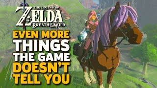 Even More Things I Wish I Knew Before I Started Zelda: Breath of the Wild