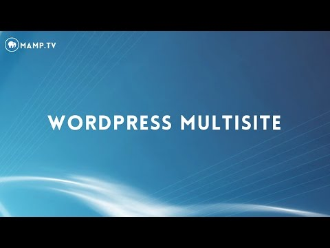 34 MAMP PRO 4 - Wordpress Multisite