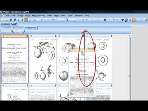 07 Moving and copying PDF and TIFF pages in PixEdit Imaging Program.