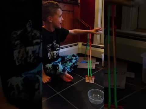 Noah's Straw Roller Coaster