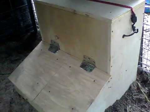 DIY Hog Feeder, Two door, gravity fed, continuous