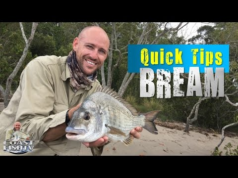 HOW TO CATCH BIG Bream on bread | Quick tips for beginners | CoastfishTV