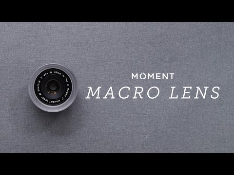 Moment: Macro Lens - The Best Mobile Photography Lens In The World