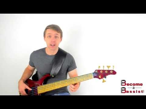 Bass Harmonics - All Of Your Notes