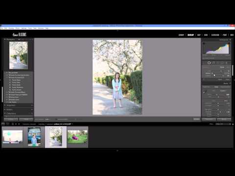 Removing unwanted objects in Lightroom