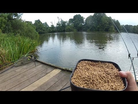 Feeder Fishing Tips - Bait, Rigs, Tactics - Catch More Fish!
