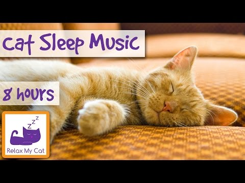 Over 8 Hours of Relaxing Music For Cats! Long Playlist For Cats. Natural Anxiety and Stress Relief