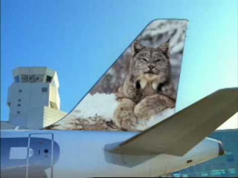Frontier Airlines #9