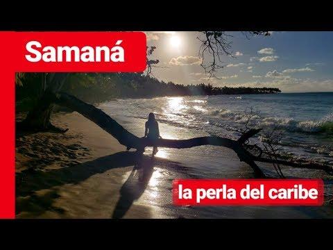 Samaná con PEDRITO Punta Cana