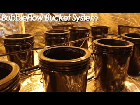 Best Grow Room Setup Design  Fully Automated Super