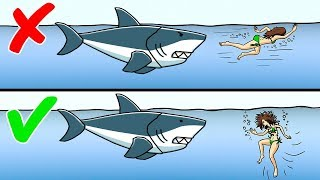 #x202b;كيف تواجه 12 حيواناً مفترساً#x202c;lrm;