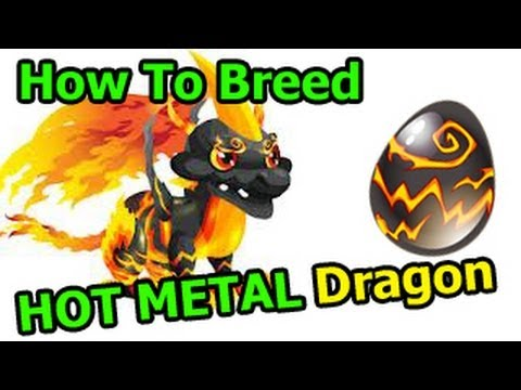 HOT METAL DRAGON Dragon City How to Breed with Butterfly + Laser Dragon