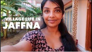 Village life in Jaffna Sri Lanka VLOG 3 | Nivii06