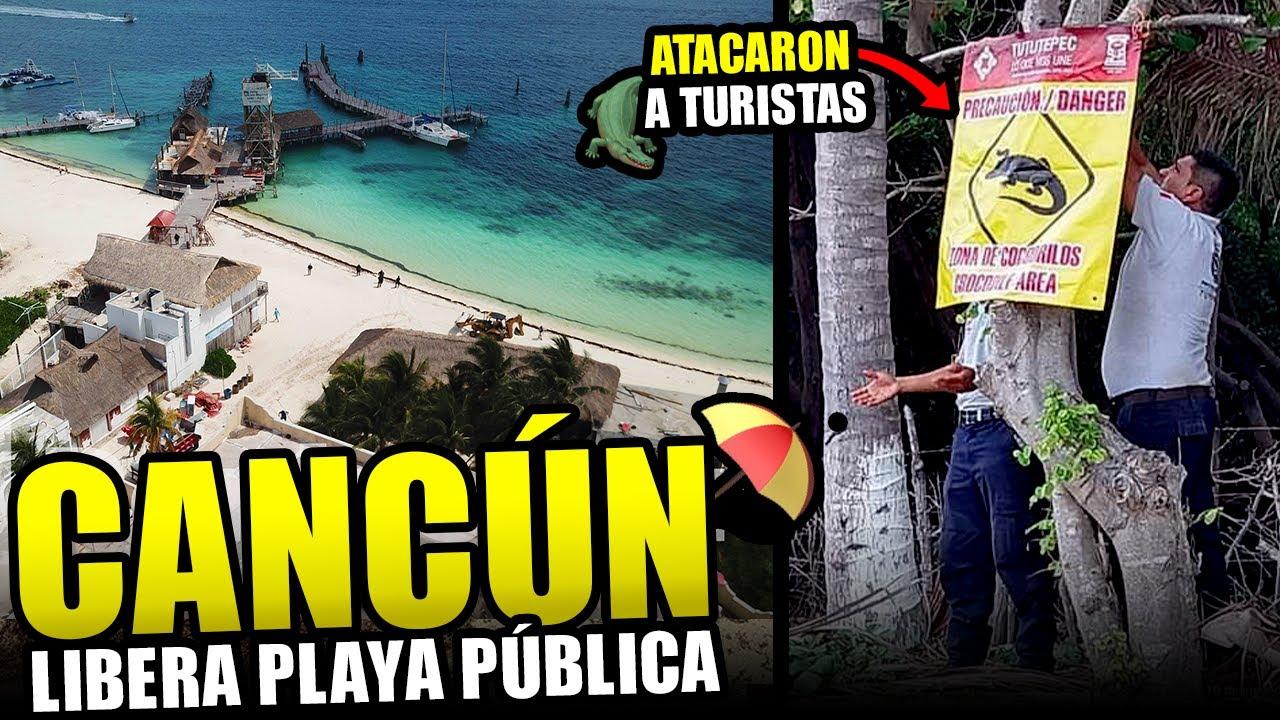 Grandes noticias para Cancún!   hay alerta por cocodrilos, regresan cruceros a Cozumel