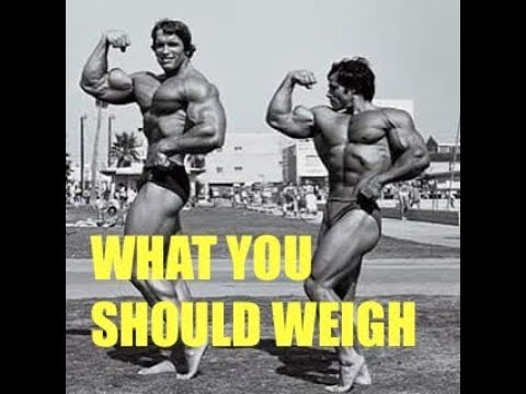 What You Should Weigh For Your Height