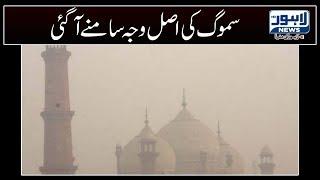 Zakia Shah Nawaz blames India for dense blanket of smog in Pakistan