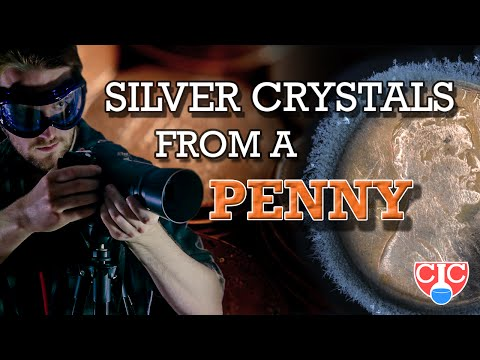 Grow SILVER Crystals from a Penny!
