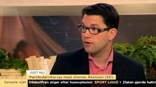 Åkesson: Kränkande att jämföra mig med rasister - Nyheterna (TV4)