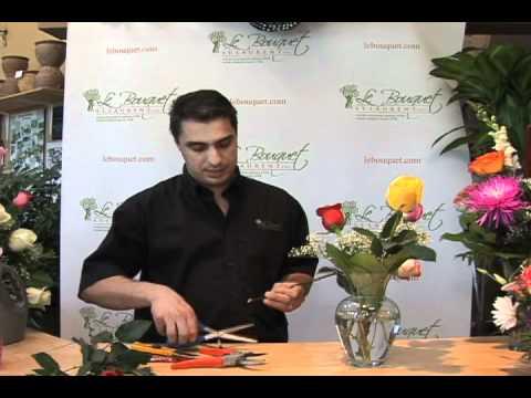 Make your roses last longer #2